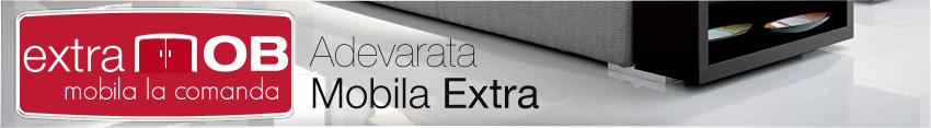 SC Extramob SRL - mobila PAL la comanda